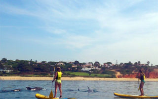 SUP Highlight Vale do Lobo